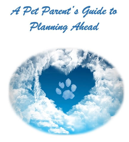 Guide to Planning AHead