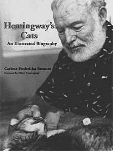 hemingwaybook