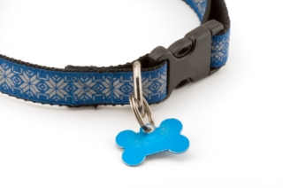 111dogcollarwithtags